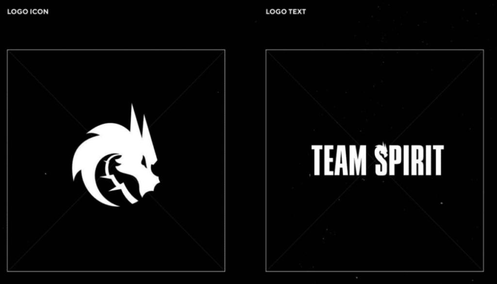 new-team-spirit-logos.png