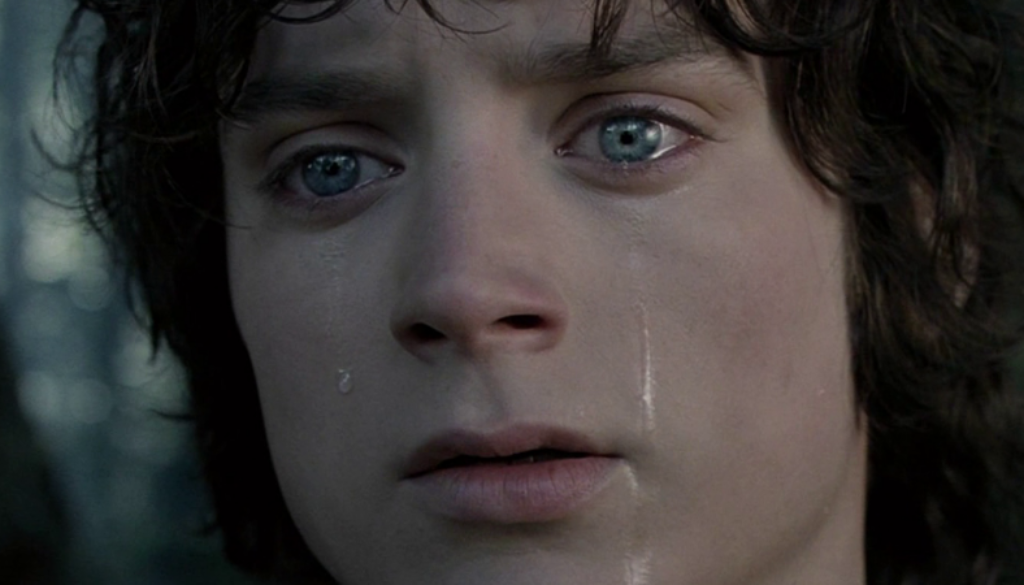 frodo-elijah-wood-lord-of-the-rings-27496036-1920-800.png