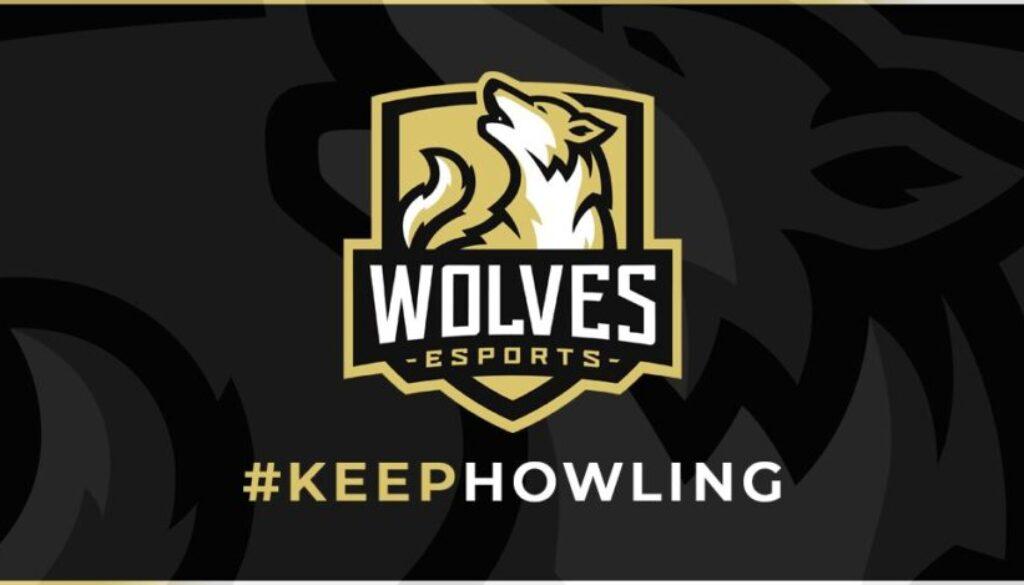 wolves-esports-king-pro-league.jpeg